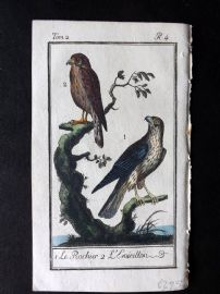 Buffon 1785 Antque Hand Colored Bird Print. Merlin 2-4
